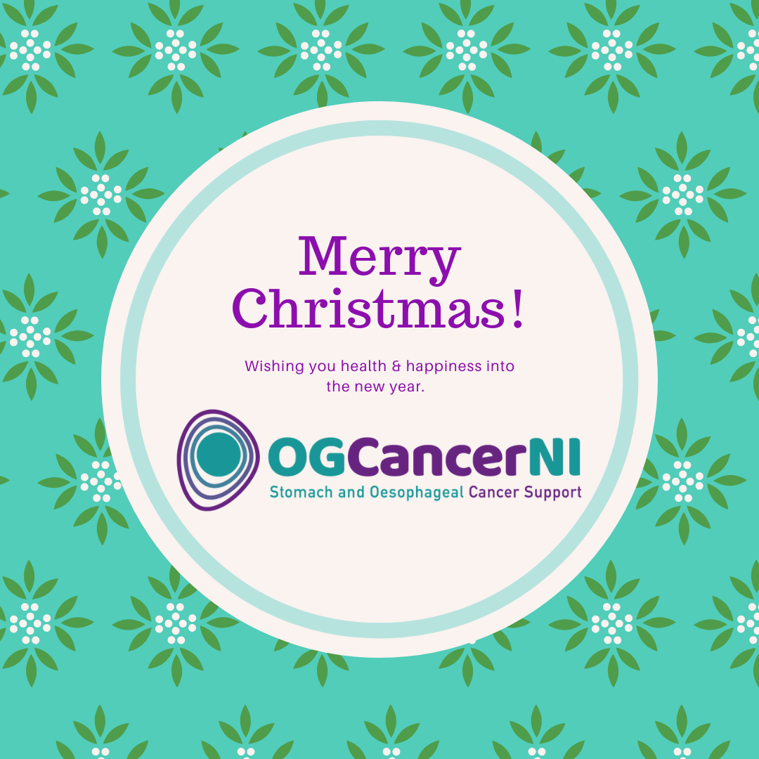 The Committee and Trustees of OGCancerNI wish you and your families a healthy and peaceful Christmas.